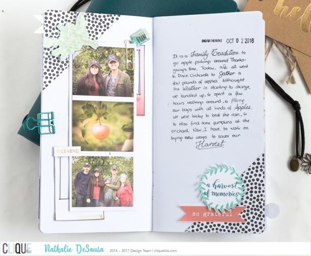 ck_nathalie-desousa_november2016_traveler-notebook-2